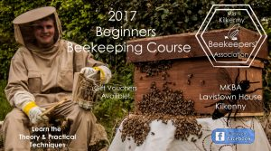 beginners beekeeping course