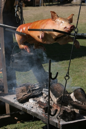 spit roast at a wedding at Croan